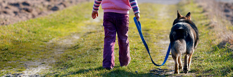 WALK TOGETHER... SIDE BY SIDE